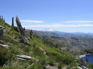 Near St. Helens Lake. Mt. Adams (in the distance) was our starting point